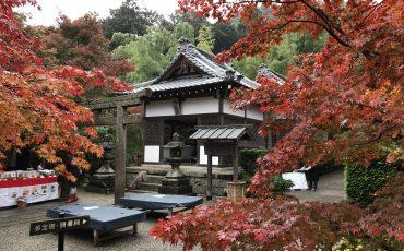 Japonya'da Din